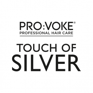PROVOKE Touch Of Silver Logo (with line) NEW